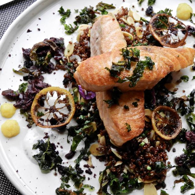 DoveCote Brasserie salmon