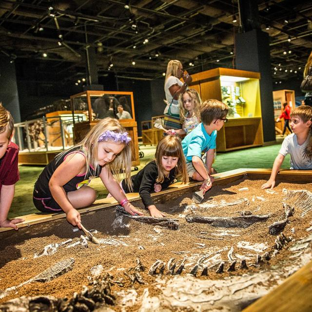Orlando Science Center Kids at fossil dig