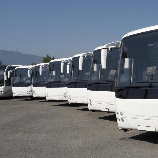 A line of buses