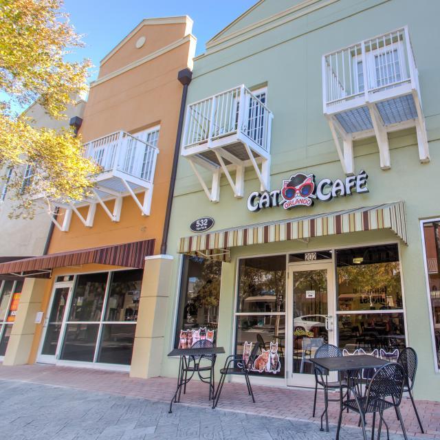 Orlando Cat Cafe exterior