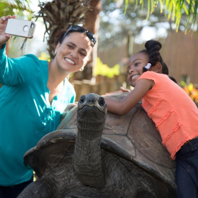 ZooTampa turtle selfie