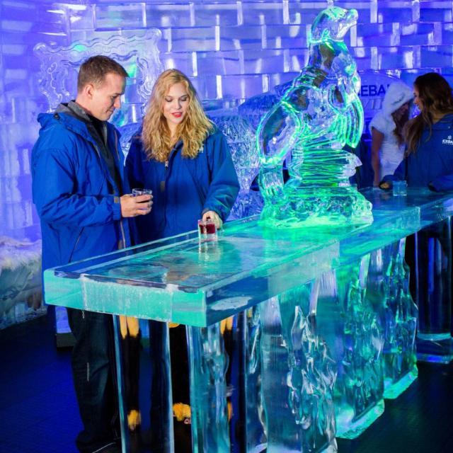 ICEBAR Orlando ice table