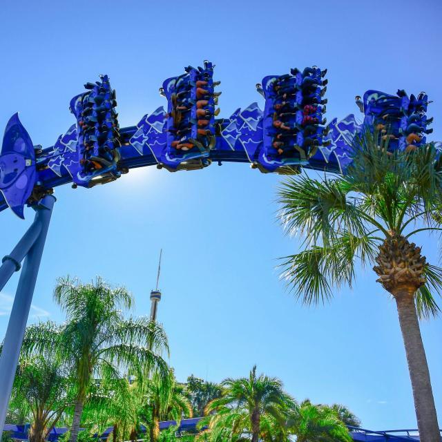 Ground view of the Manta roller coaster at SeaWorld Orlando