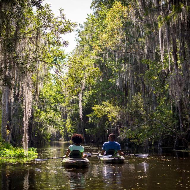 The Ritz-Carlton Orlando, Grande Lakes eco-tour by kayak