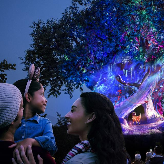 Tree of LIfe lit up for the holidays at Disney's Animal Kingdom