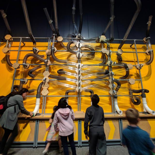 Wide, low angle of complex air-tube contraption for sending scarves flying through the air at Orlando Science Center.