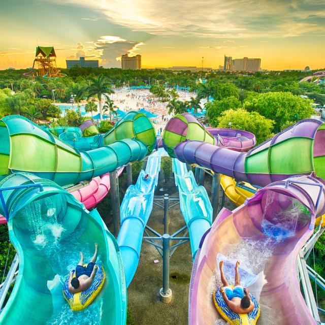 An aerial view of Riptide Race at Aquatica® Orlando.