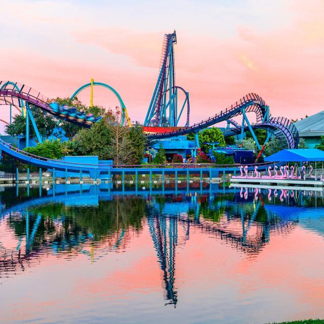 SeaWorld® Orlando mako sunset