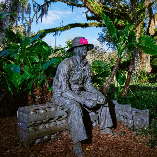 Statue at Harry P. Leu Gardens