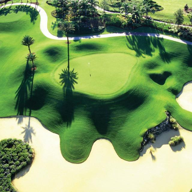 Reunion Resort Golf Courses overhead of Palmer Course