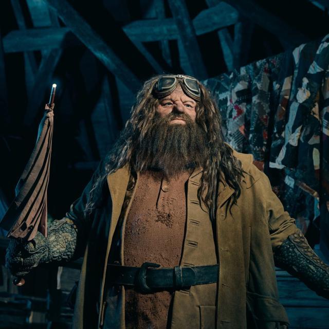 Hagrid animated figure at Hagrid's Magical Motorbike Adventure ride at Universal's Islands of Adventure..