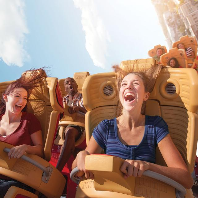 Universal Studios Florida Rip Ride Rockit screamers
