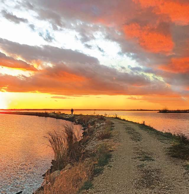 Terrells Island Sunset
