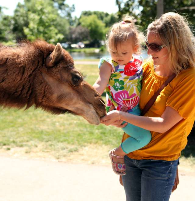 Menominee Park Zoo