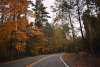 Take a Scenic Drive and Explore the Fall Foliage in the Pocono Mountains
