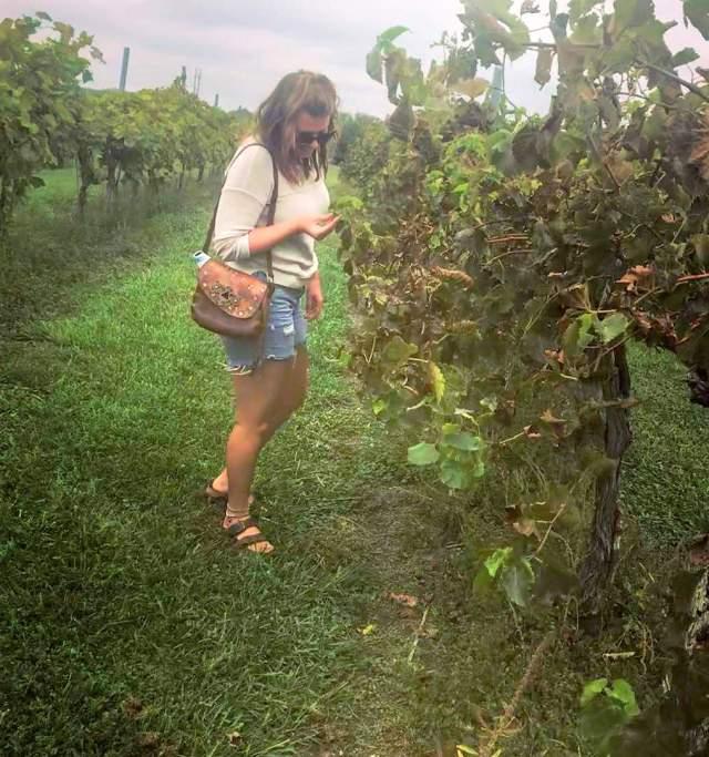 Bluejacket winery