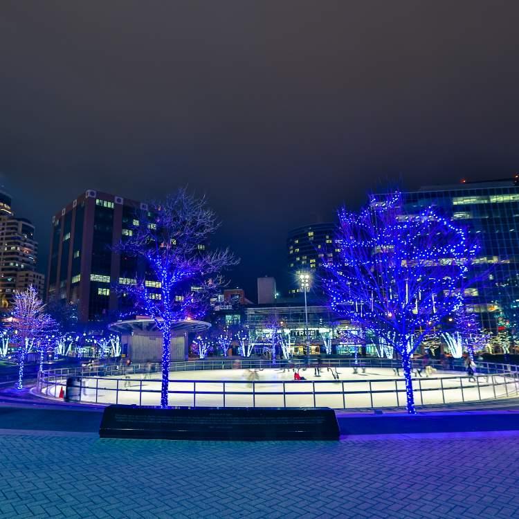 Holiday Lights & Ice Skating Downtown