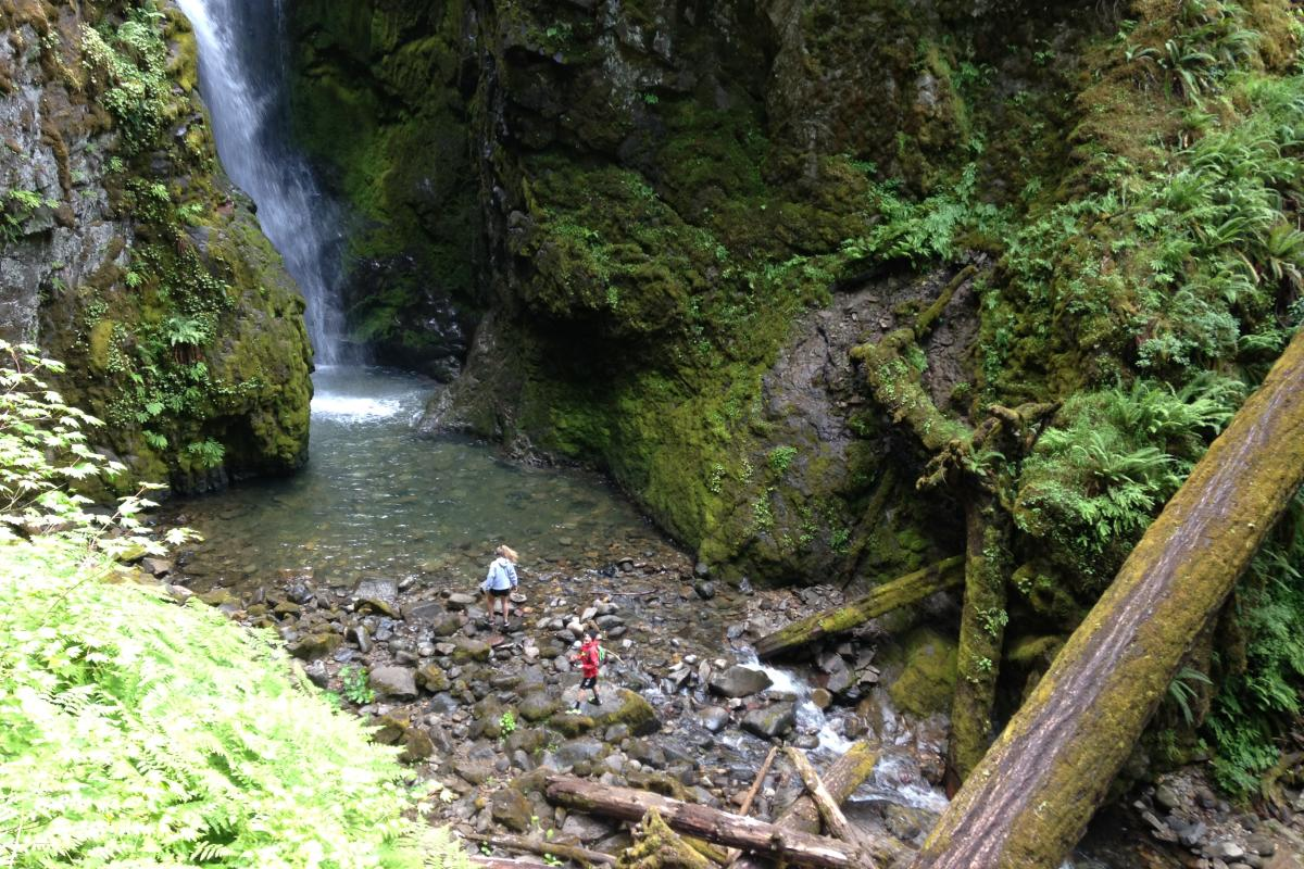 Pinard Falls by Taj Morgan