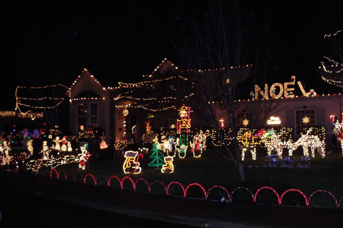 Christmas Holiday Light Tour by Sally McAleer