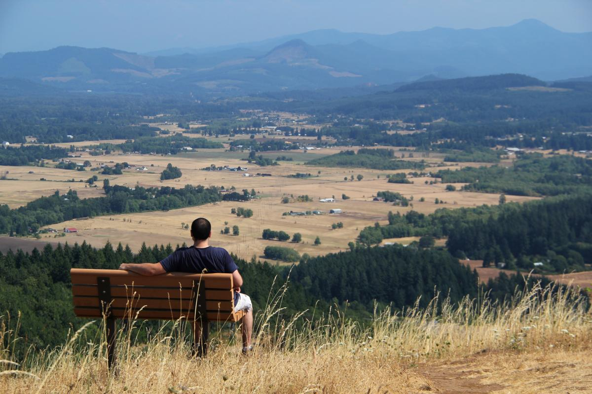 Mt. Pisgah Viewpoint by Traci Williamson