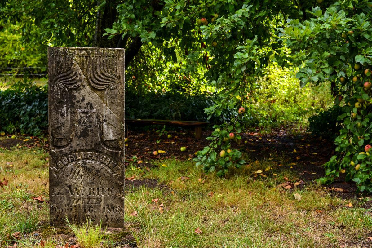 Luper Pioneer Cemetery by Melanie Griffin