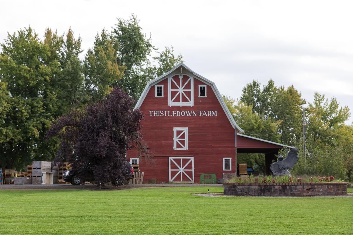 Thistledown Farm by Joni Kabana