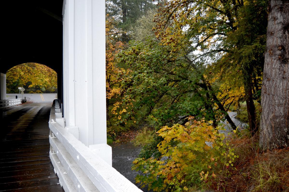 Earnest Covered Bridge in the rain by Sally McAleer