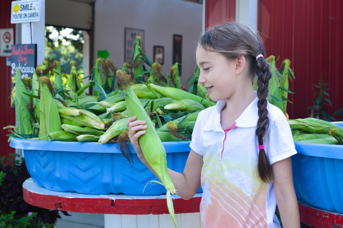 Corn at Bush's Fern View Farm by Melanie Griffin