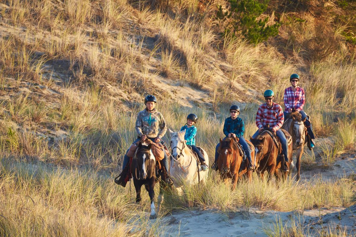 Family Dunes Horseback Ride with C&M Stables by Jacob Pace