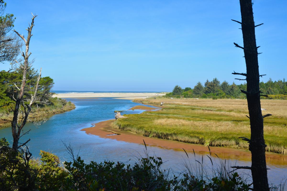 Siltcoos River winds towards the ocean through coastal grasslands and sandy beaches.
