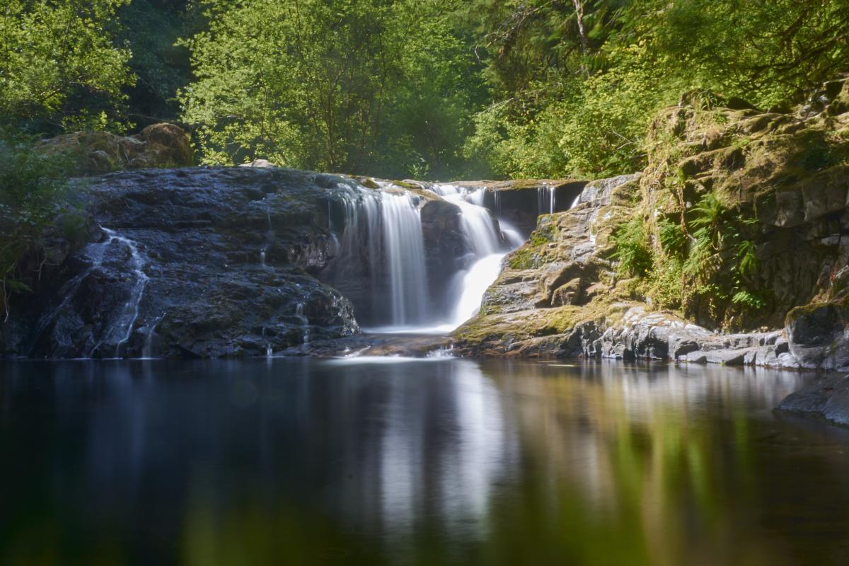 Sweet Creek Falls by Thomas Moser