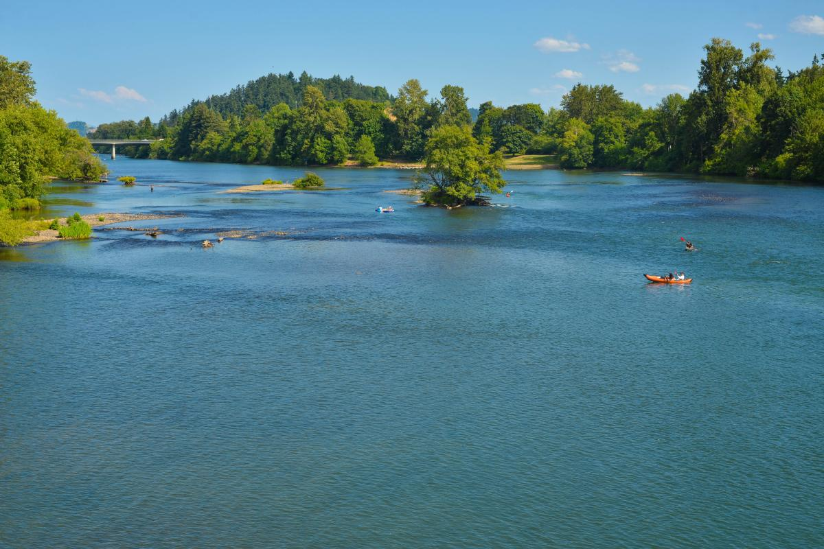 A kayaker on the Willamette River in summer time