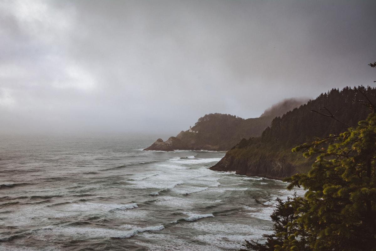 Winter Ocean Oregon Coast by Taylor Higgins