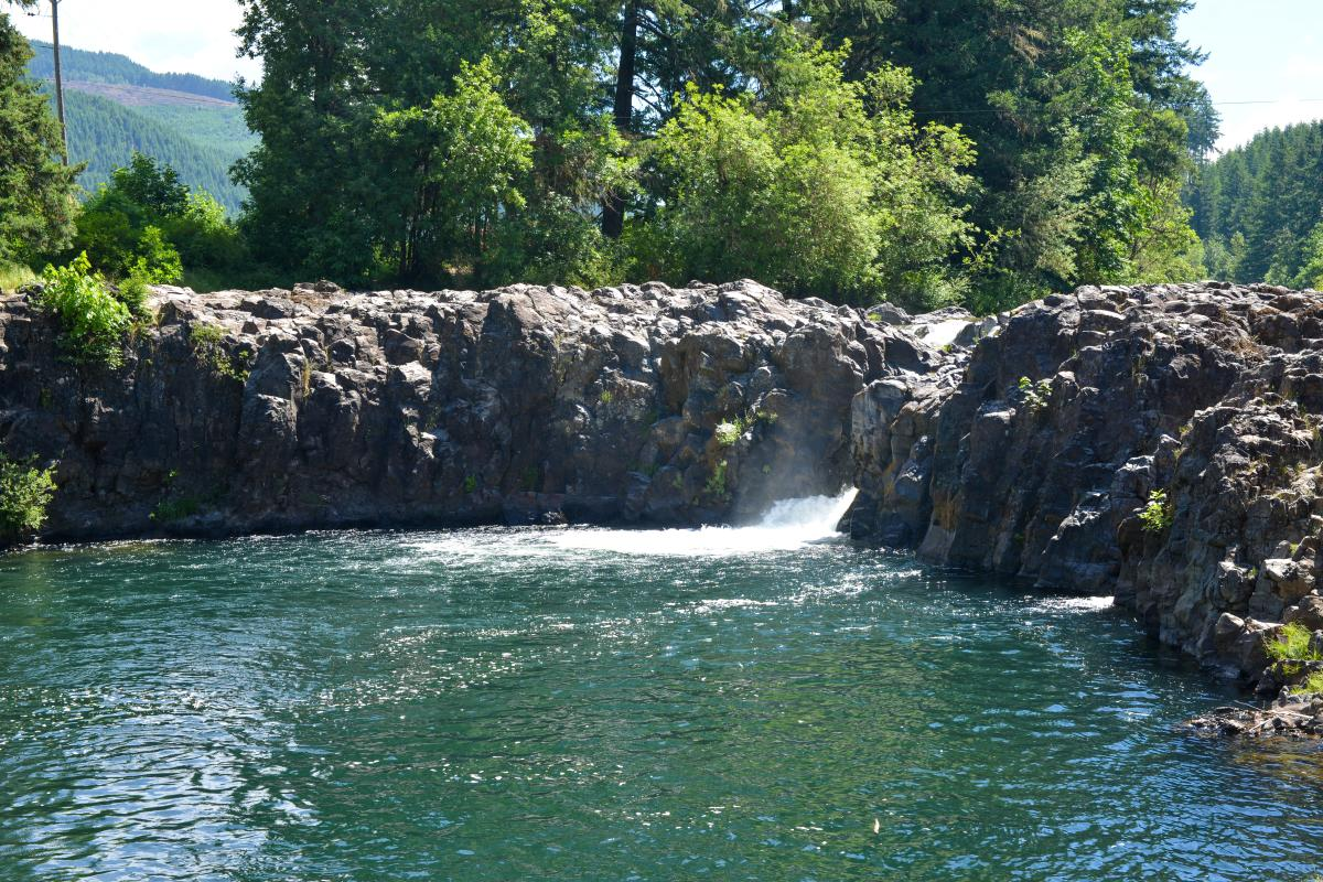 Wildwood Falls by Melanie Griffin
