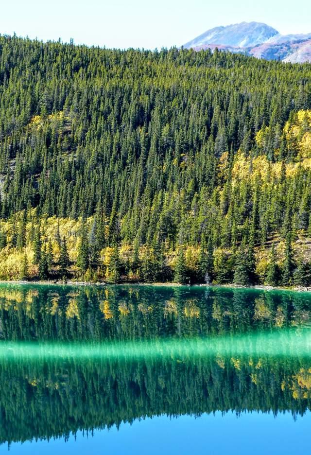 FE Emerald Lake