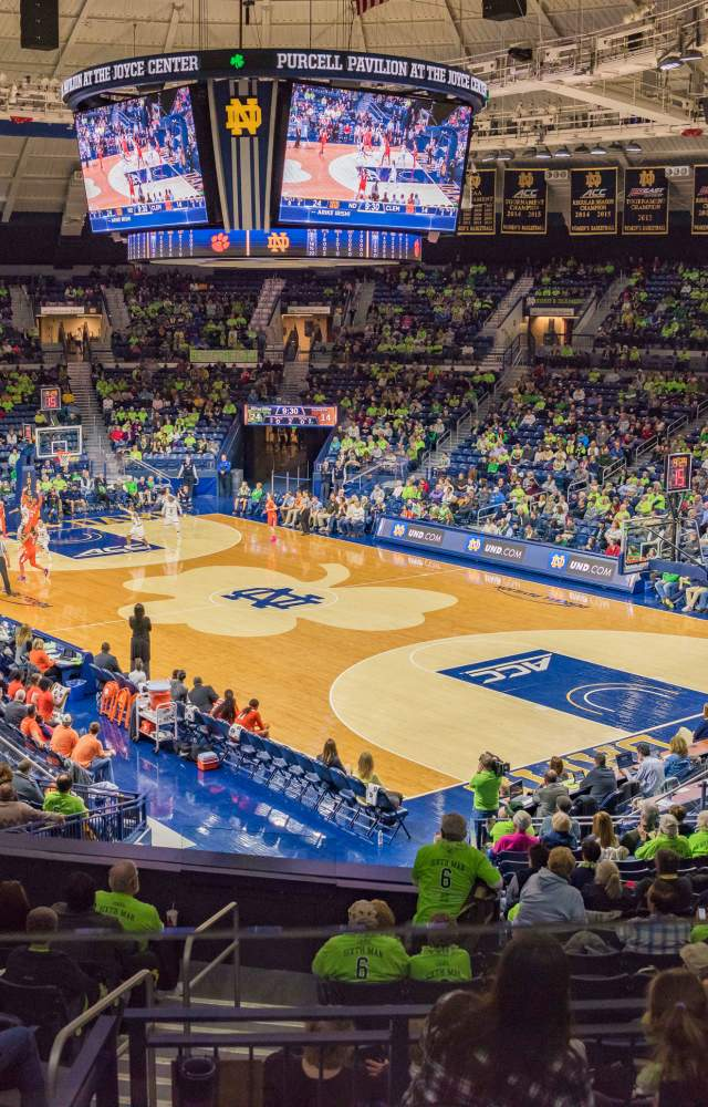 A wide shot of Purcell Pavilion during a womens basketball game