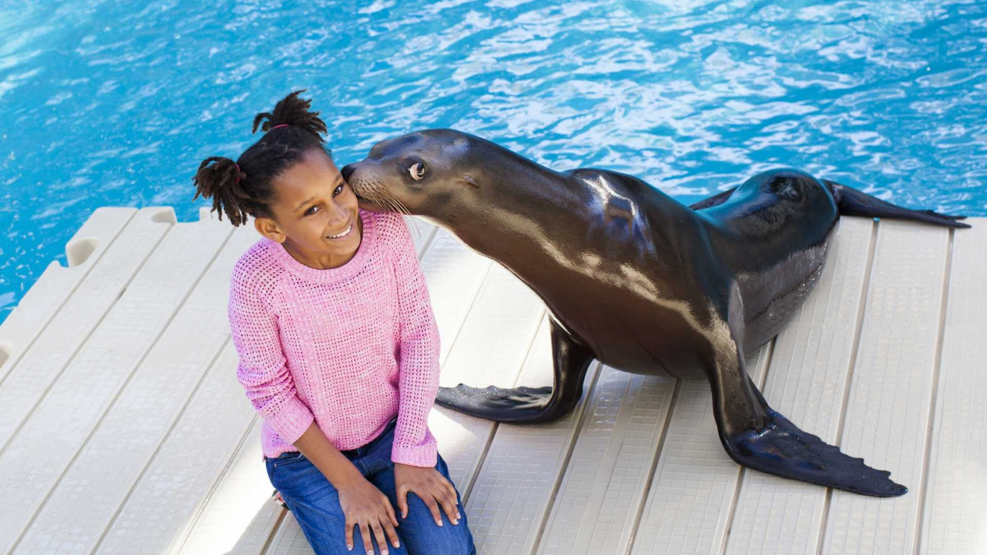 Things To Do With Kids In Houston Attractions Zoos Theaters