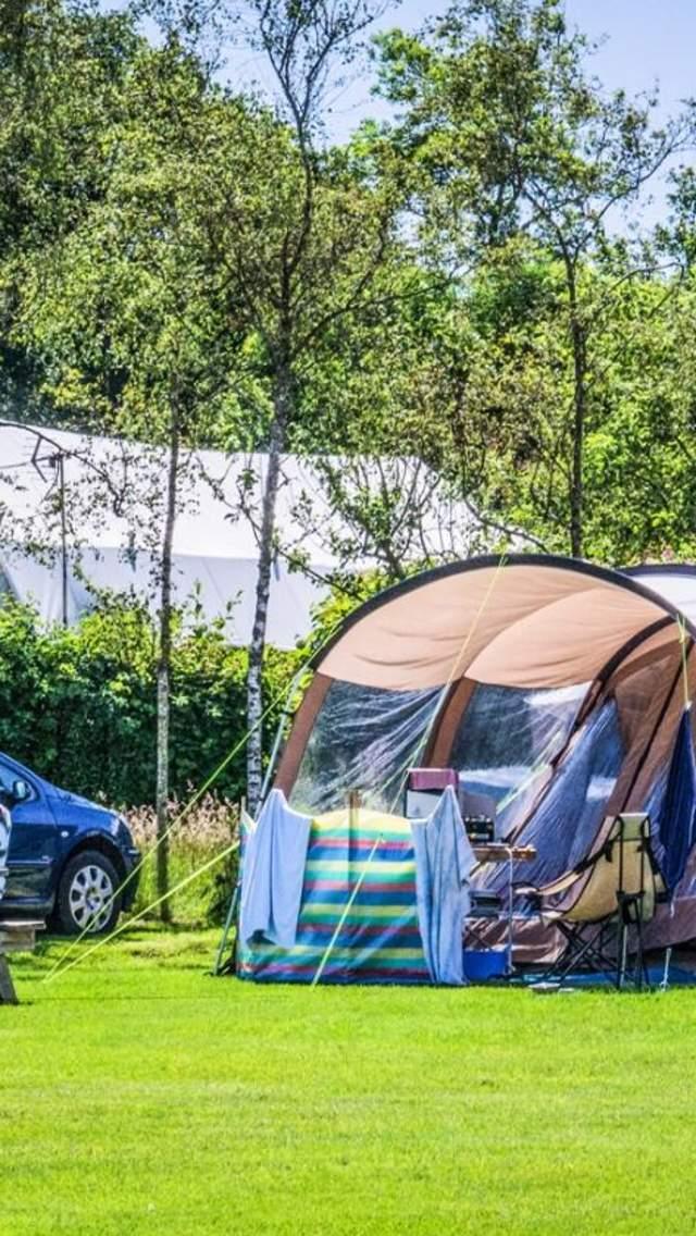 Camping at Monkton Wyld