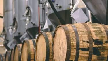 Lazy Magnolia Brewery