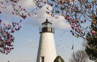 Lighthouse Springtime
