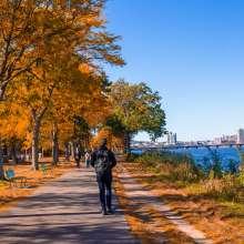Esplanade in Fall