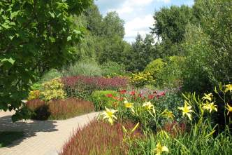 Flowers in full summer bloom at the Olbrich perennial garden