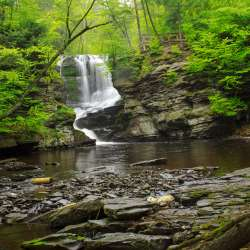 Fulmer Falls at George W. Childs Park