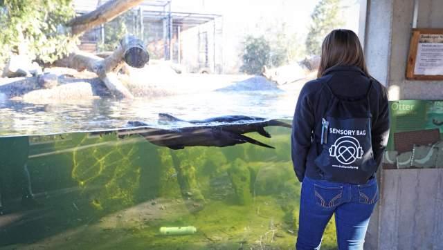 Potter Park Zoo Sensory Friendly