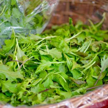 A mix of fresh lettuce in a basket at the Dane County Farmers' Market