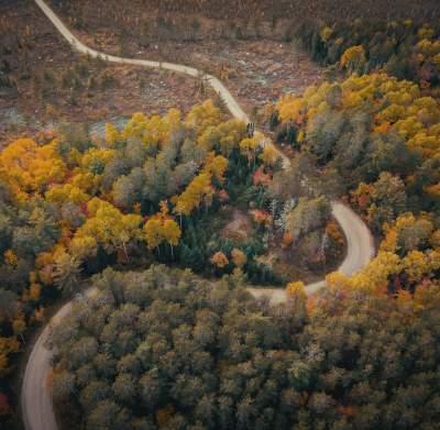 Winding Road Fall Colors