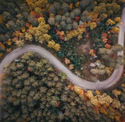 Winding Fall Road