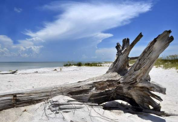 Beaches Worth Visiting in the U.S.