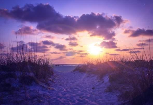 Gulf Coast Secrets