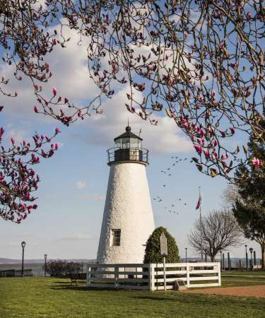 Lighthouse Springtime
